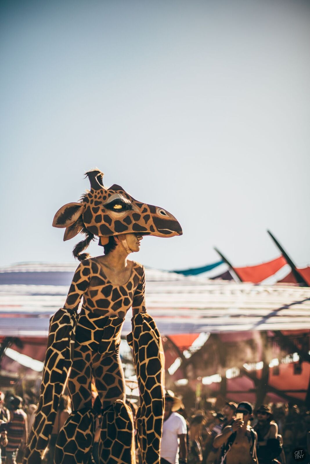 lib giraffe