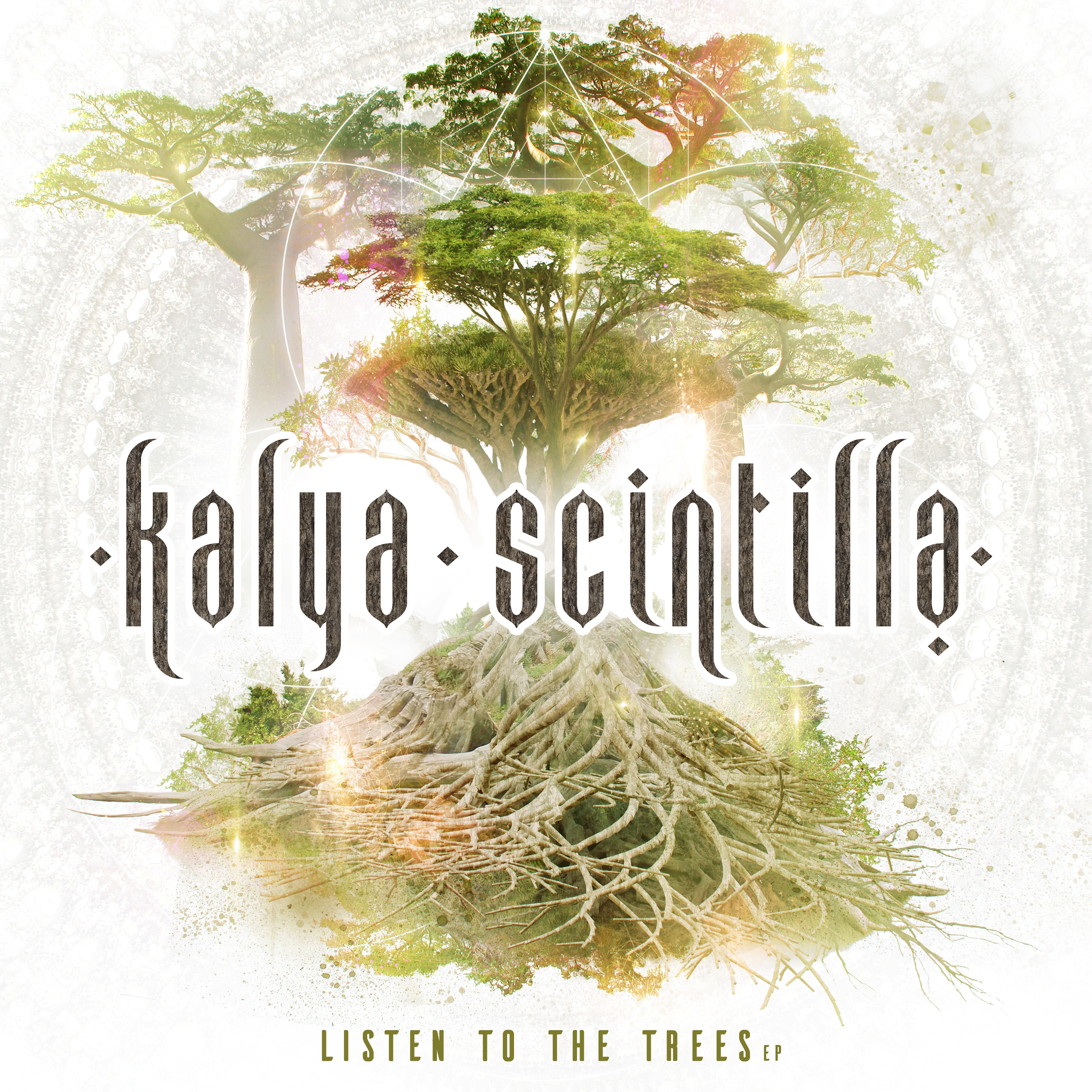 Listen to the Trees Cover
